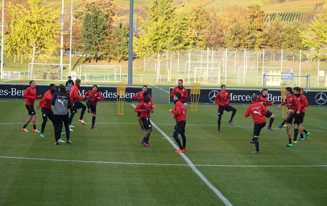 VfB-Training_02.11_3